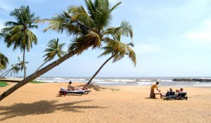 Negombo One Day Tour